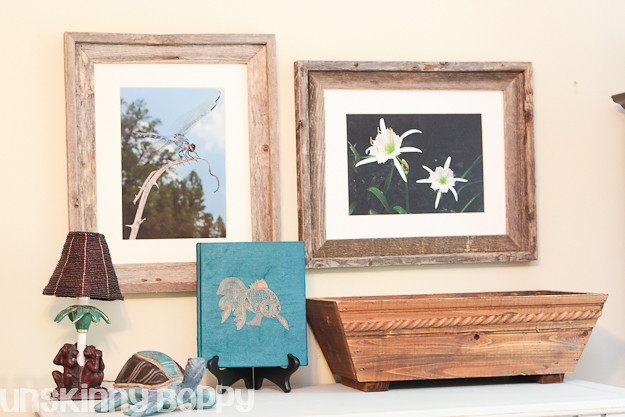 cahaba lily river and nature inspired office with dragonfly photo