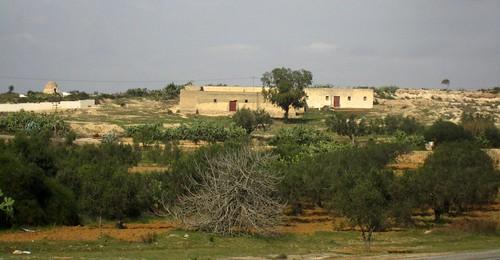 africa tunisia tunesien nordafrika