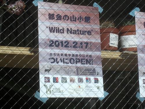 張り紙@wild nature(江古田)