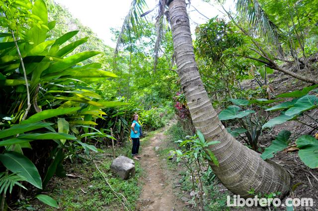Balagbal Falls Real Quezon