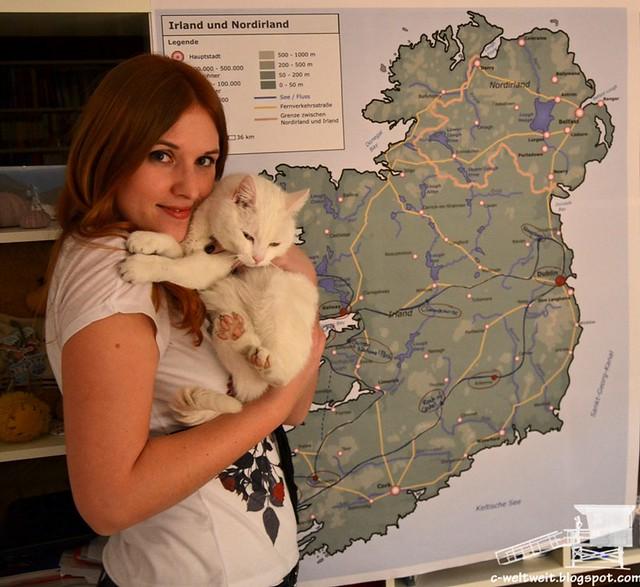 Irland Map (2)