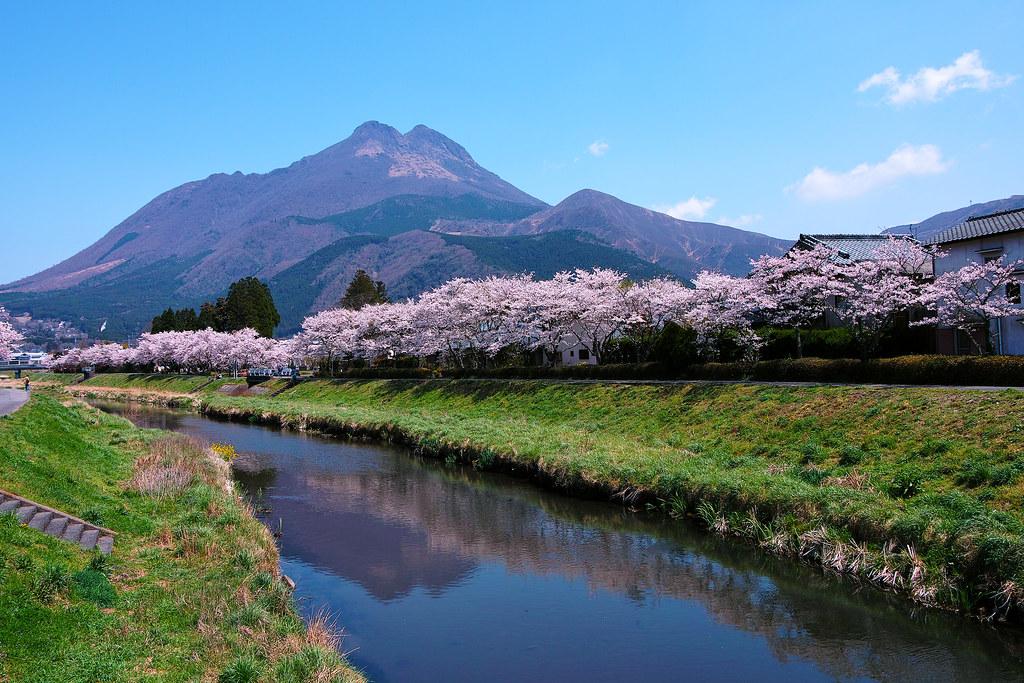 Yufuin -2012 spring-