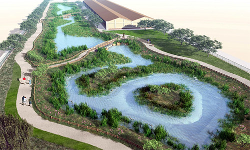 rendering of the wetland when mature (by: City of LA stormwater program, via KCET-TV)