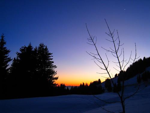 moon mountain snow tree lune neige aldor arbre lontagne