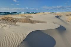 """Singing Sands""   Ludington State Park - Ludington, Michigan by Michigan Nut"