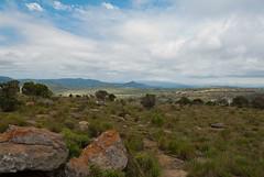 Voyage en Afrique du Sud Novembre 2011-129.jpg