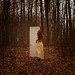 The Door by Patty Maher