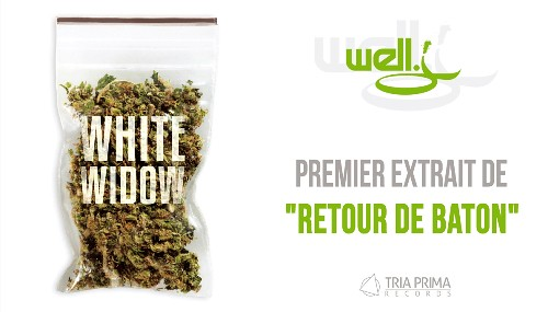 "Well J ""White Widow"" (nouveau morceau) 7018623623_324b283168"