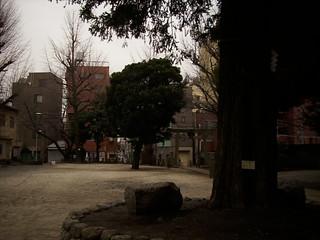 2012-0308-polaroid-i837-086