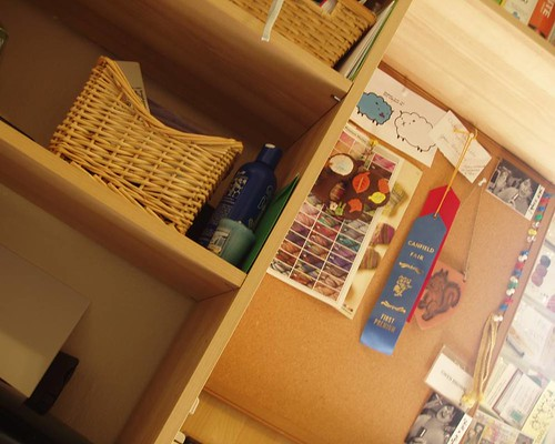 snapshots: shelves
