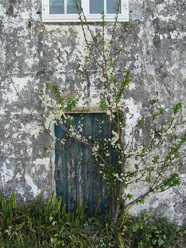 Puerta poco frecuentada by JoseAngelGarciaLanda