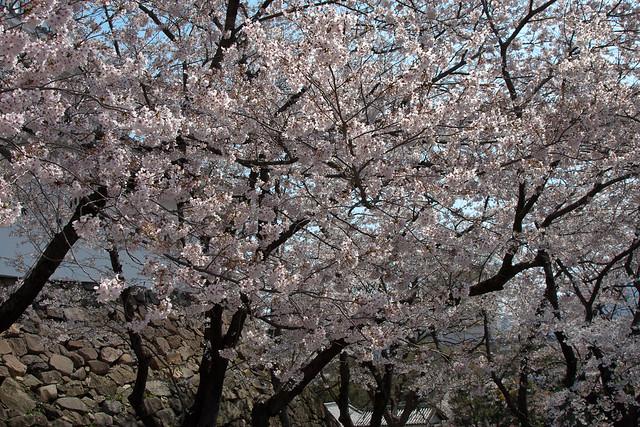 2012-kyushu-172