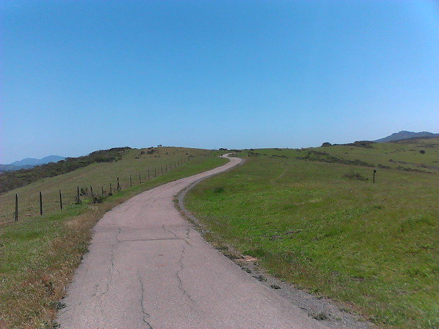 Nimitz Way, looking South.