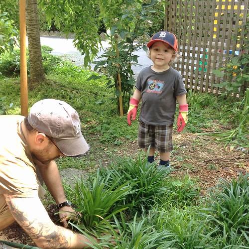 littlest gardener