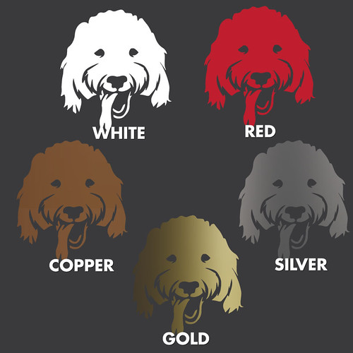 Goldendoodle-Dark-Colors