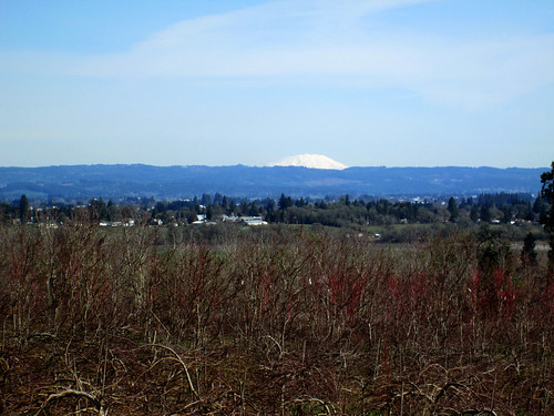 Mt St Helens from Plumlee