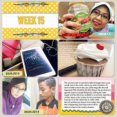 Week15a-web