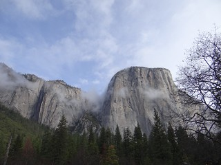Fog Clears Around El Capitan, Yosemite National Park, CA