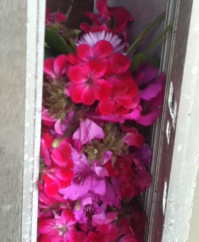 mailbox slot stuffed with pink flowers