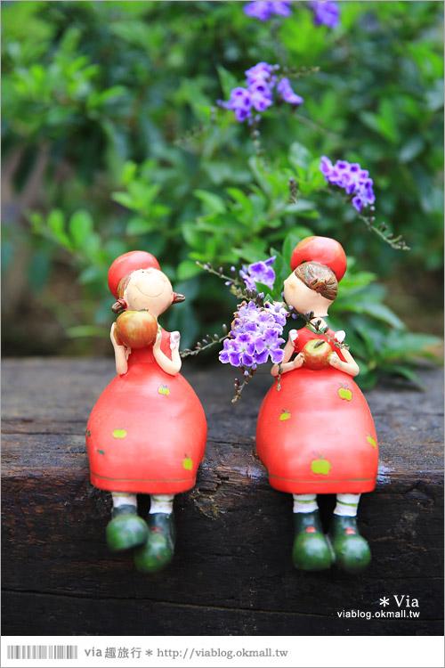 【新竹景點推薦】森林鳥花園~親子旅遊的好去處!在森林裡鳥兒與孩子們的樂園27