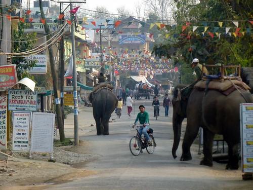 Nepal, Sauraha
