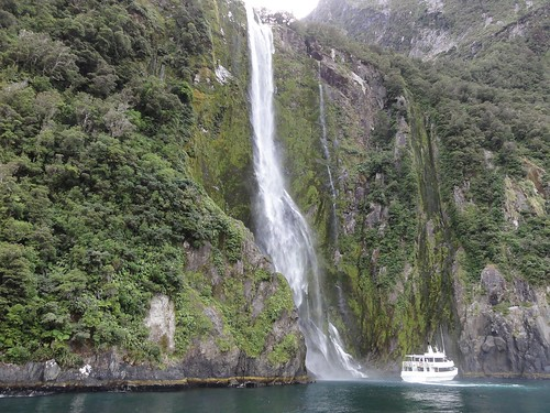 Milford Sound Cruise 59