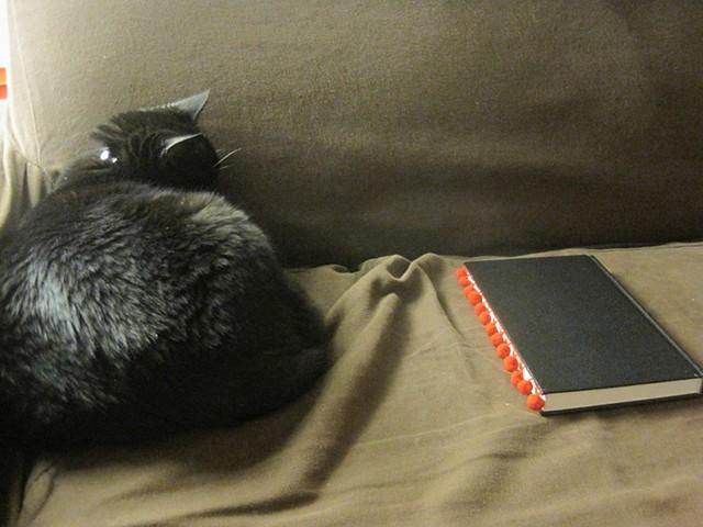 Pom Pom Book DIY cat