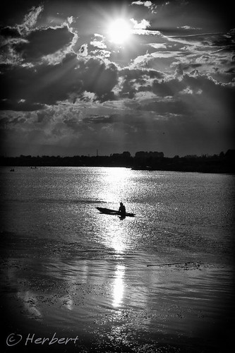 Alone on Dal Lake, Srinagar by fish-bone