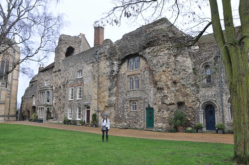 Houses built into the Abbey ruins