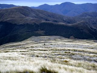 New Zealand Tops near Mt. Crossley