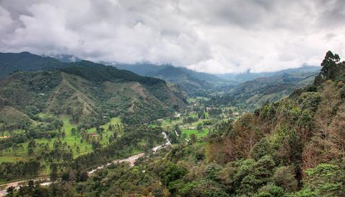 Colombia - Triángulo del Café 01