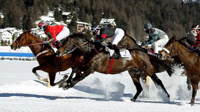 Akce a novinky ve Švýcarsku