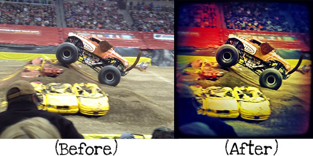 Monster Mutt-Before_After copy