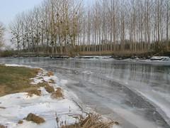 Grosne 2012