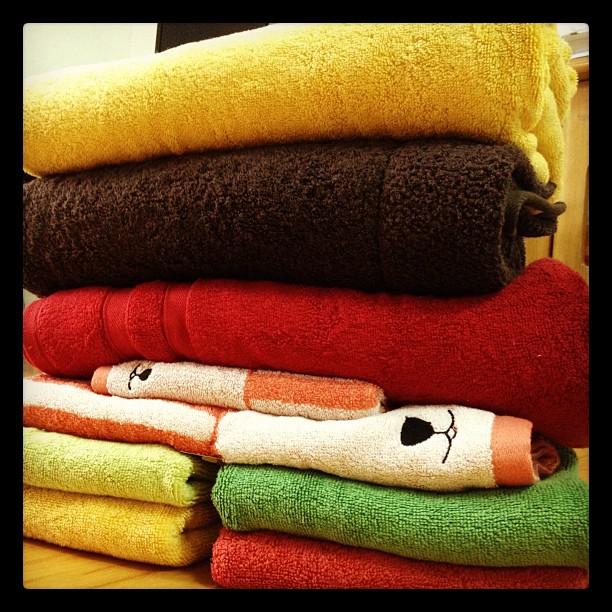 Towel 戰利品