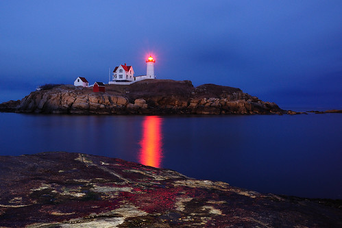 nubble1 by MY DOG TAZ