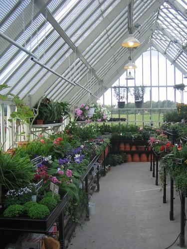 Display greenhouse at Westgarden