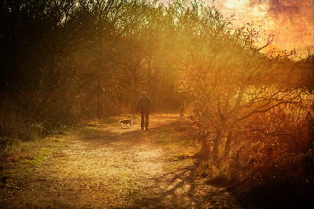 One man and his (readybrek) dog
