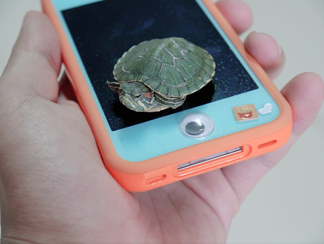 terrapin on typicalben phone