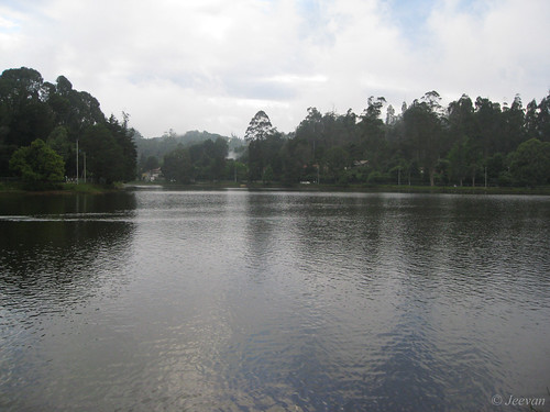 Kodai lake - calm