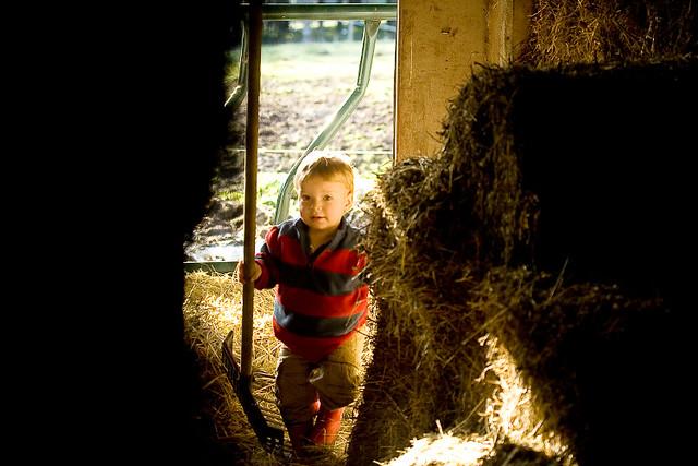 farmer_boy