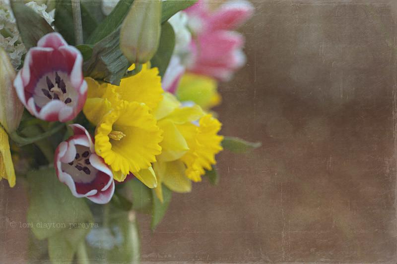 springflowers-1