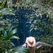 Xochempich Cenote - Yucatan, Mexico por uncorneredmarket