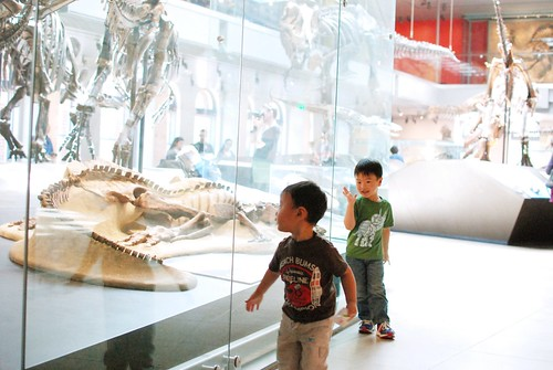 One Step Beyond Museum Of Natural History Reviews