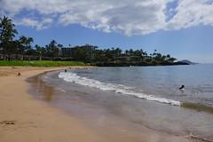 2012-02-10 02-19 Maui, Hawaii 248 Wailea, Ulua Beach