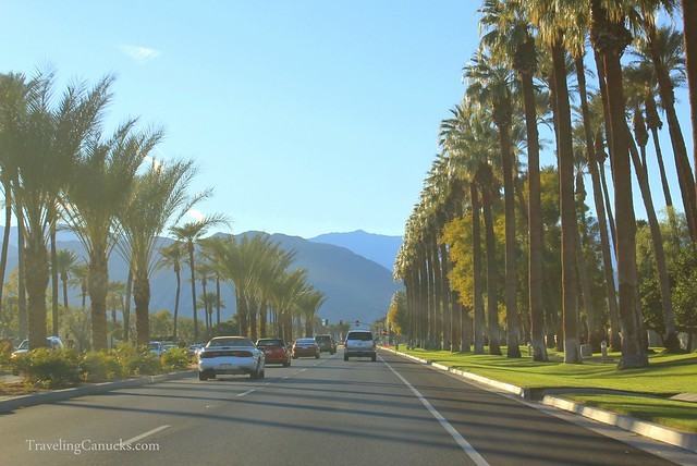 Evening Drive in Palm Springs