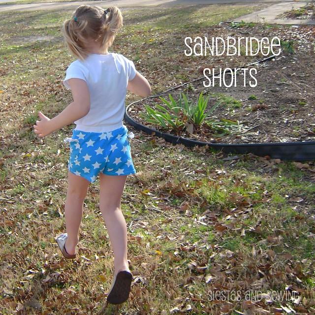 Sandbridge shorts