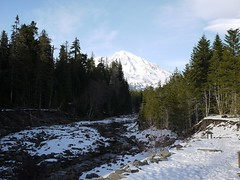 Mt Rainier from Kautz Creek