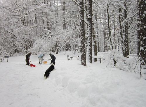 アプローチの雪掻き 2012年3月10日8:30 by Poran111