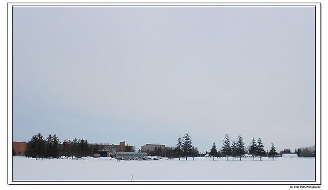 2012-02-29-DSCN0617